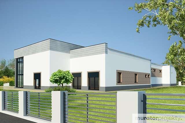 Zobacz powiększenie wizualizacji ogrodowej - projekt Budynek usługowy